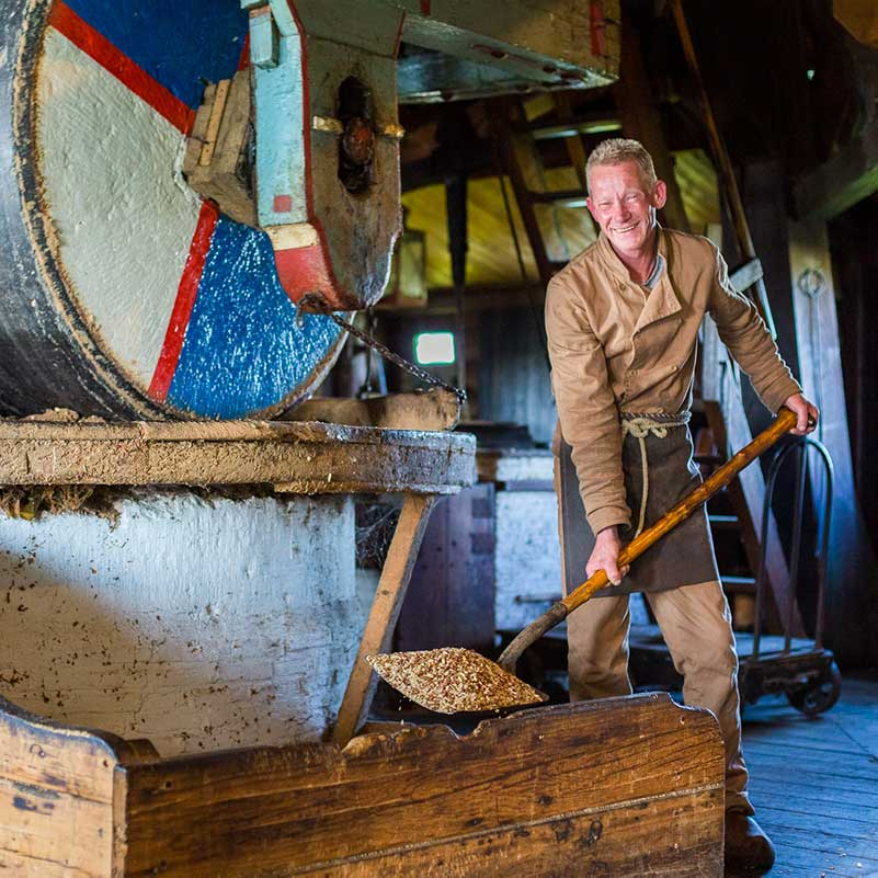 A miller shovels grain inside a working windmill during the Charm of Holland Tour.