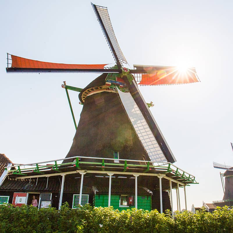 A Dutch windmill standing in the sun during The Best of Holland Tour.