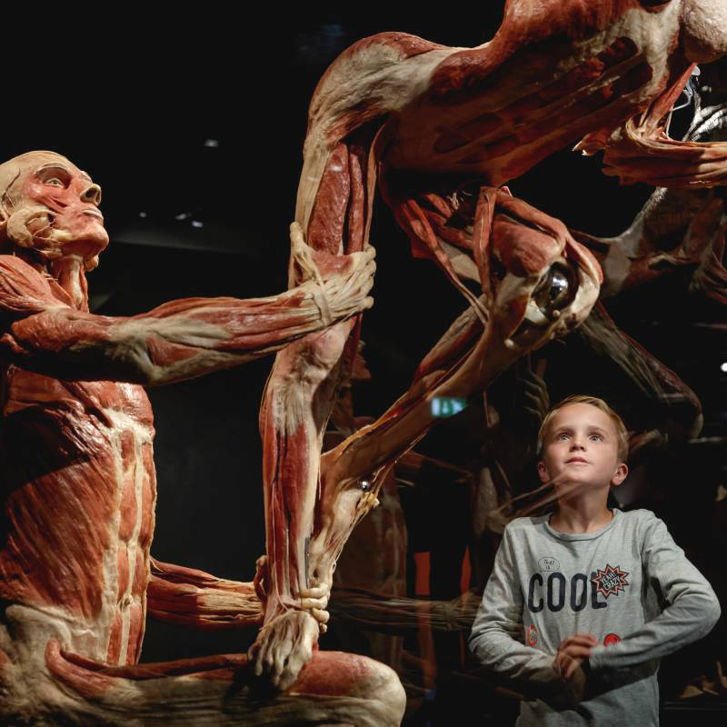Body Worlds Amsterdam