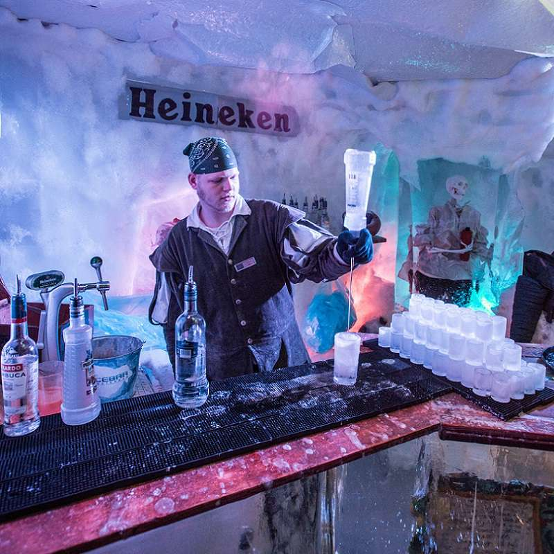 Hop on Hop off bus & boat 24 h. + Amsterdam Icebar